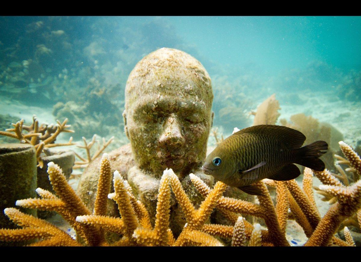 Cancun espande il suo Museo subacqueo