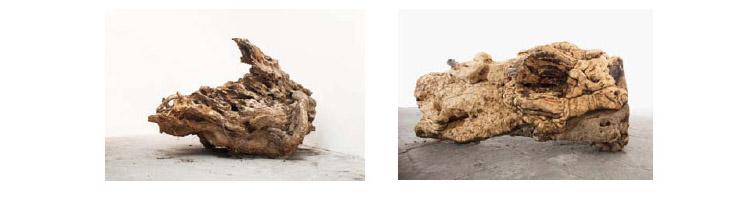 Jimmie Durham in mostra a Palazzo Reale di Napoli per Progetto XXI