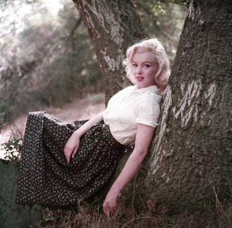 All'asta un'inedita Marilyn
