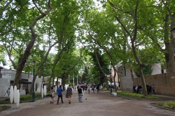 Visite guidate alla Biennale di Venezia '13 #2