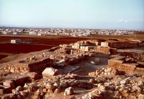 AAA Cercasi Monuments Men per salvare il patrimonio della Siria