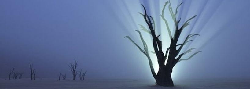 Ritorna il Master di Fotografia Naturalistica al Forte di Bard