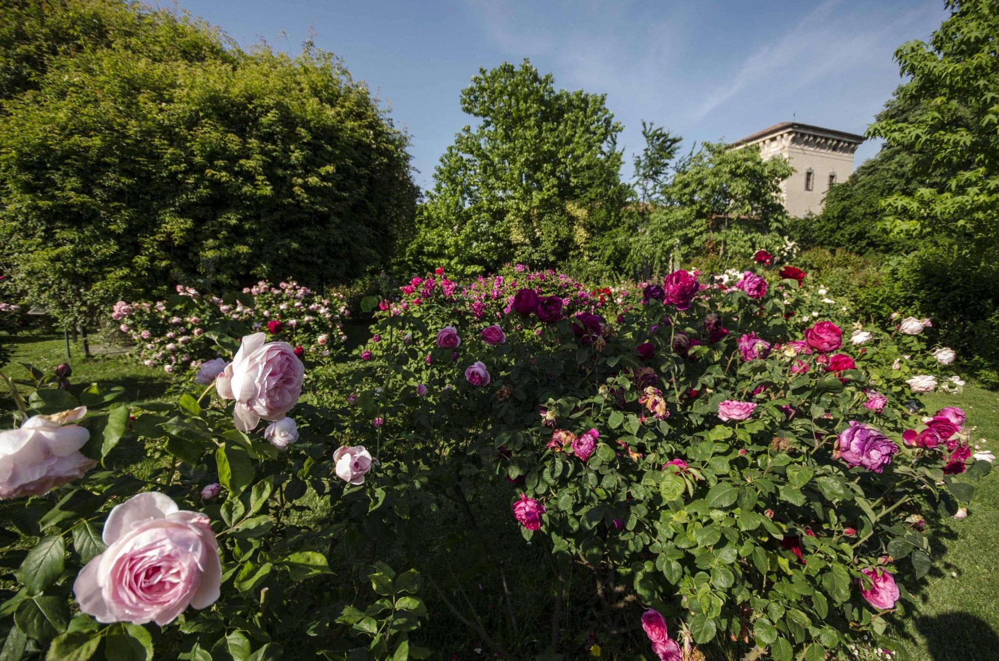 Castello Quistini. Arcobaleni di colore per la fioritura delle rose