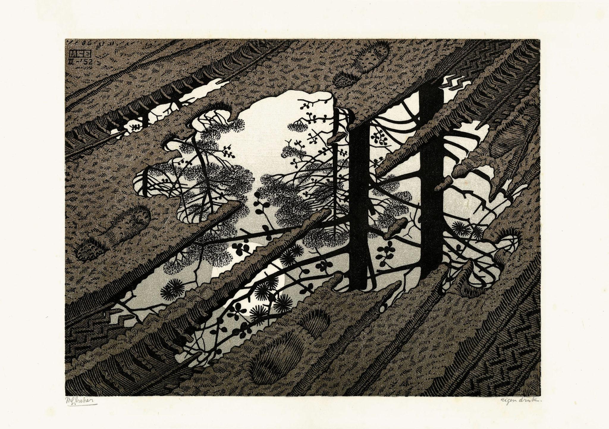 Maurits Cornelis Escher Pozzanghera