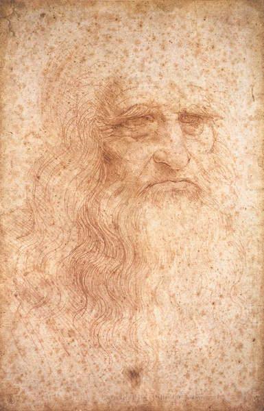 Leonardo, Ritratto di un uomo anziano