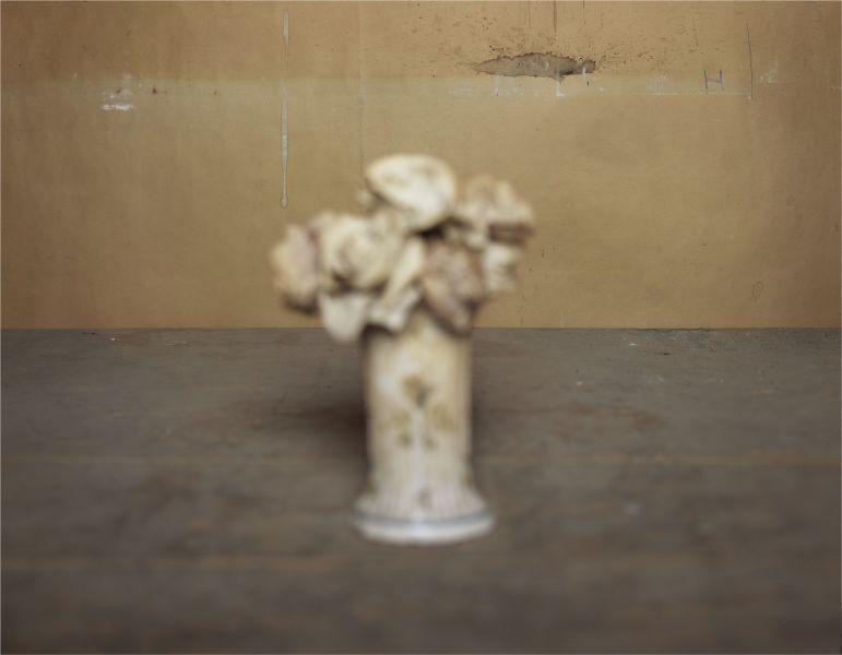 Horizon. L'orizzonte tra Brigitte March Niedermair e Giorgio Morandi