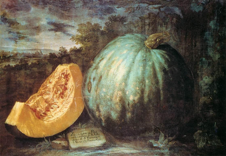 Bartolomeo Bimbi, Zucca, 1711