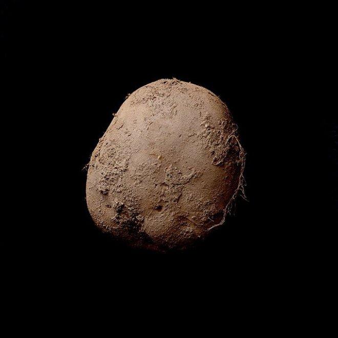 Tubero stellare! Una foto di patata da 1 milione di euro