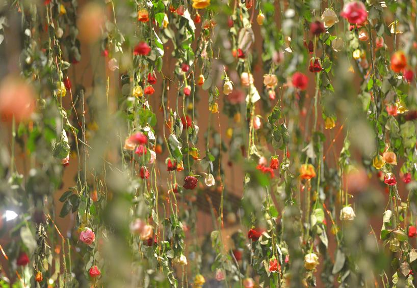 Una volta di 30 mila fiori tinge il cielo sopra Berlino. Rebecca Louise Law saluta la primavera