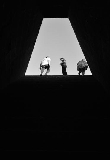 FIORE CAO - Fotografia 50cmx30cm