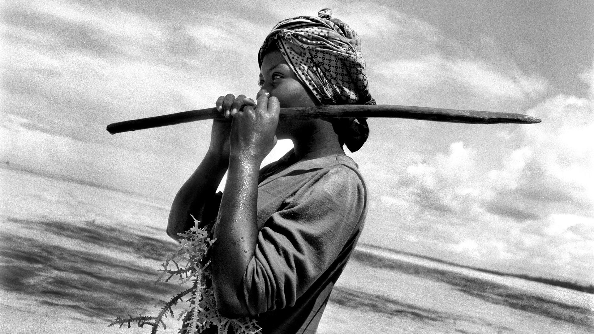 Le donne alghe - danilo de marco - Fotografo: danilo de marco