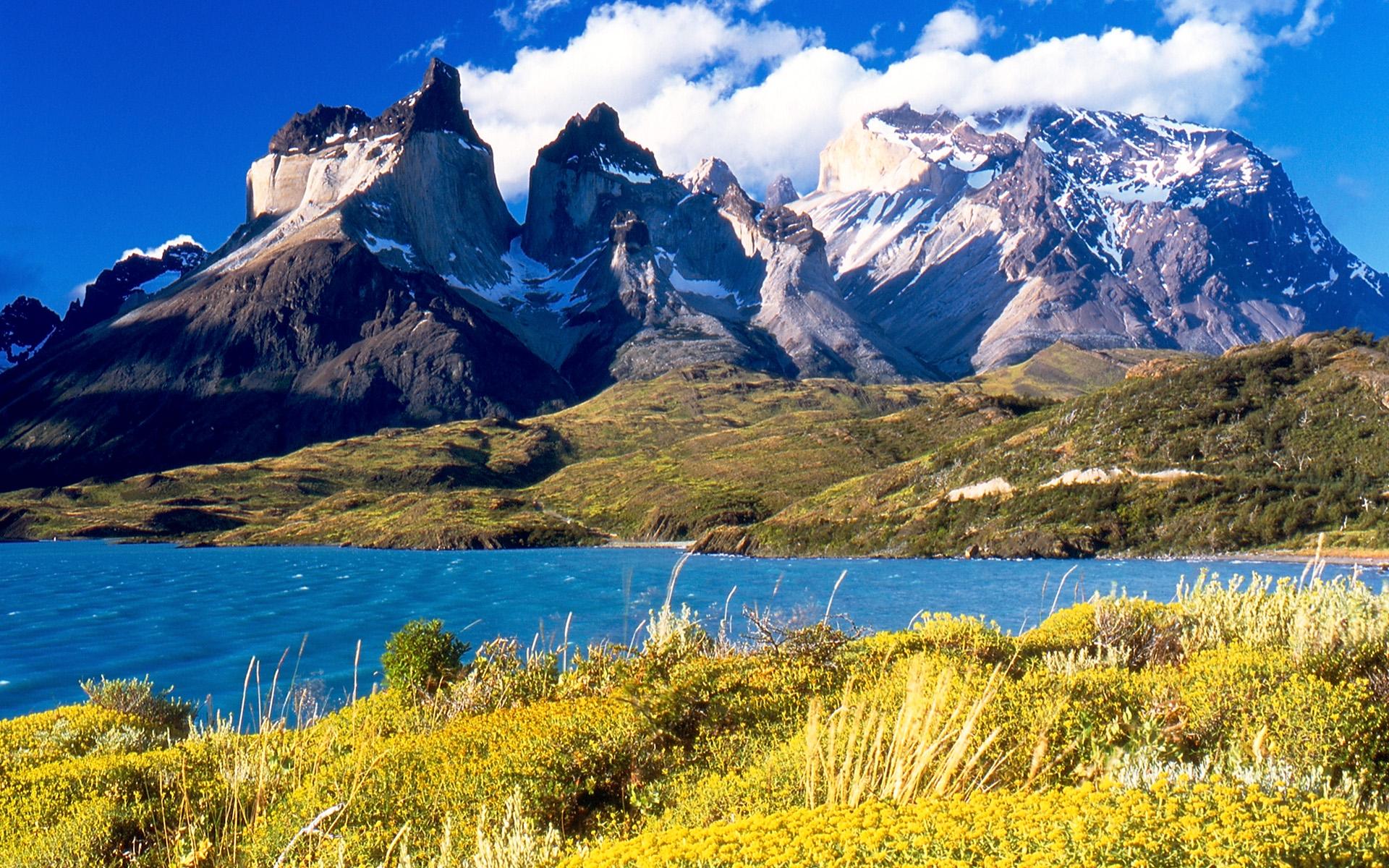 Proposte viaggi: dalla selvaggia Patagonia alla festa dei ciliegi giapponese