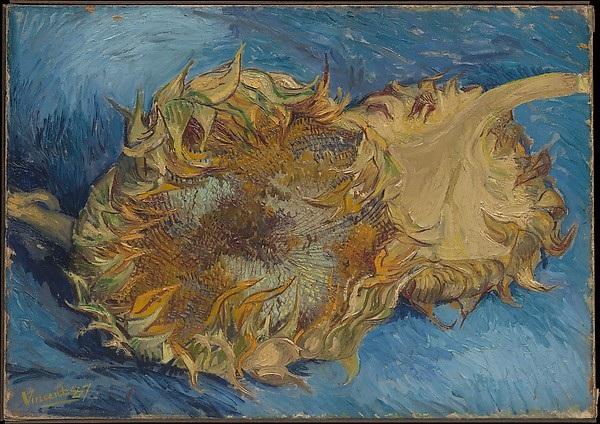 Sunflowers Vincent van Gogh , 1887 Oil on canvas