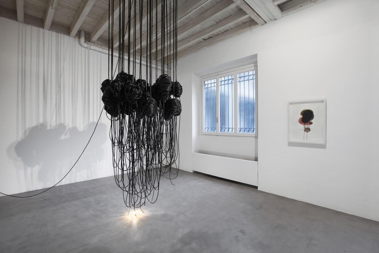 Paolo Grassino - Per sedurre gli insetti - 2015