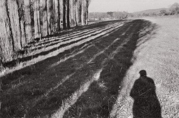 Cartier-Bresson raddoppia in asta. 120 scatti valgono 2 milioni $