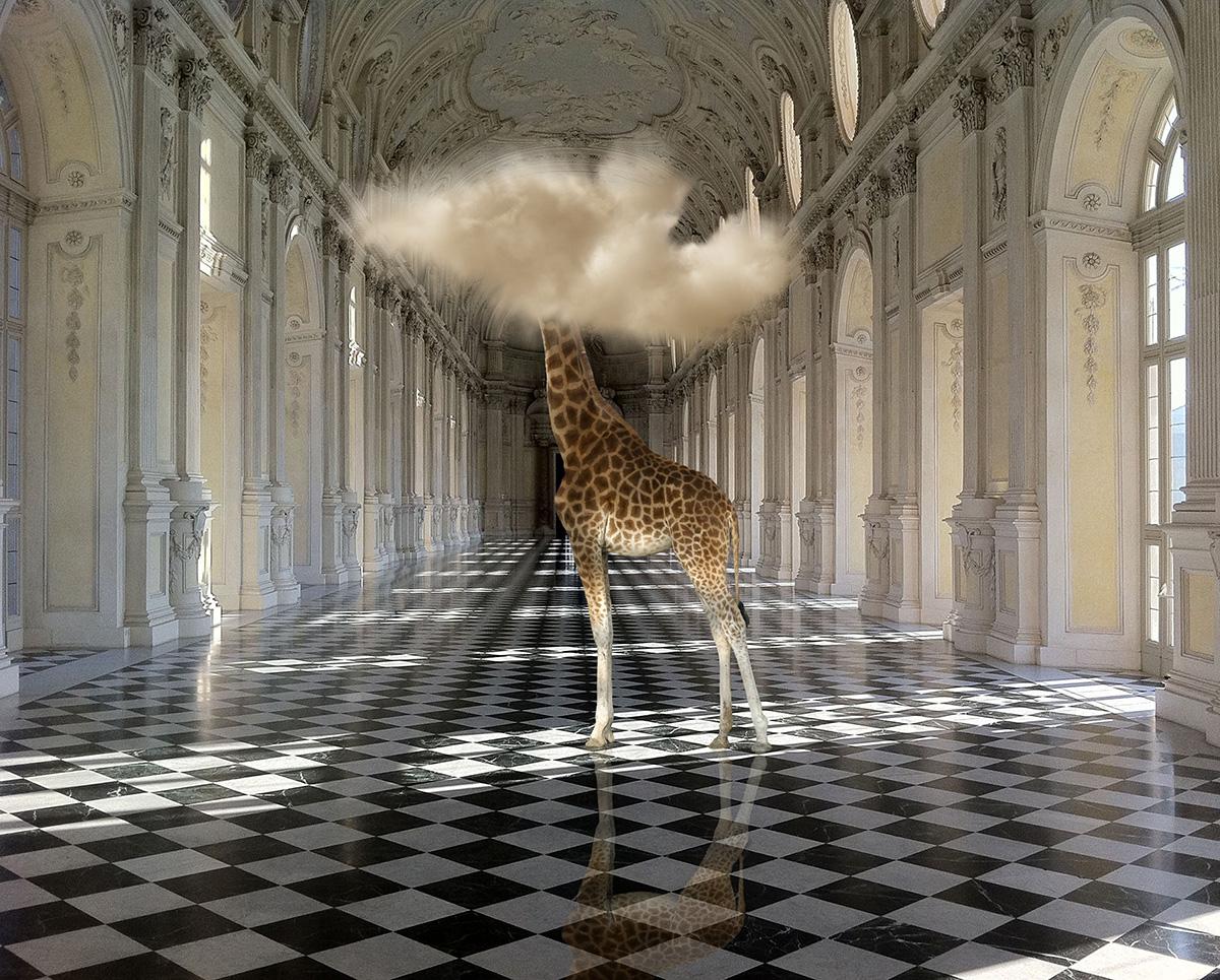 In mostra a Massa gli scatti surrealisti di Bart Herreman