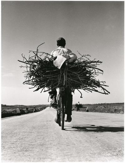 Fulvio Roiter, Sicilia, Sulla strada Gela – Niscemi, 1953