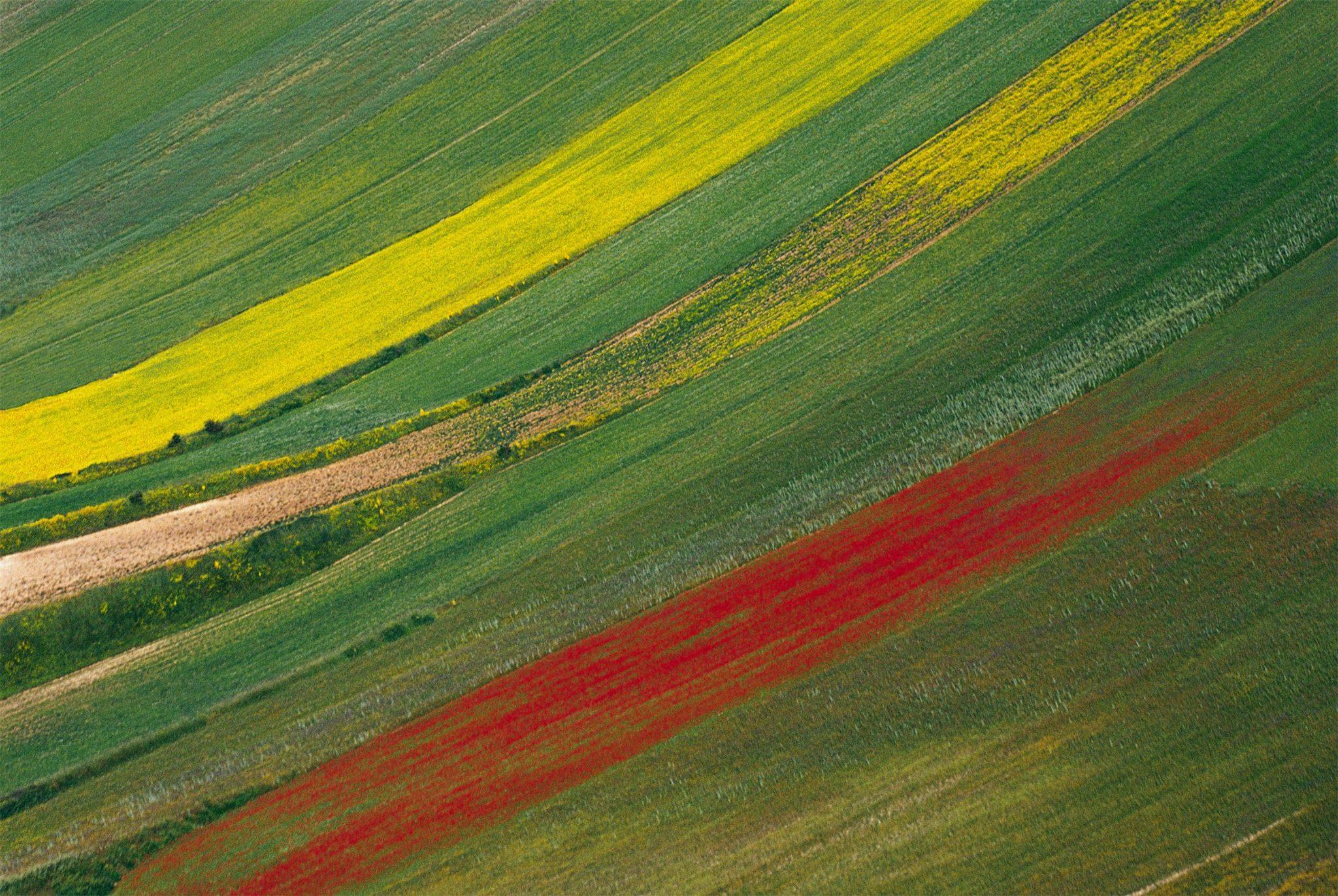 La forma del colore nei paesaggi di Franco Fontana e Davide Coltro, a Parma