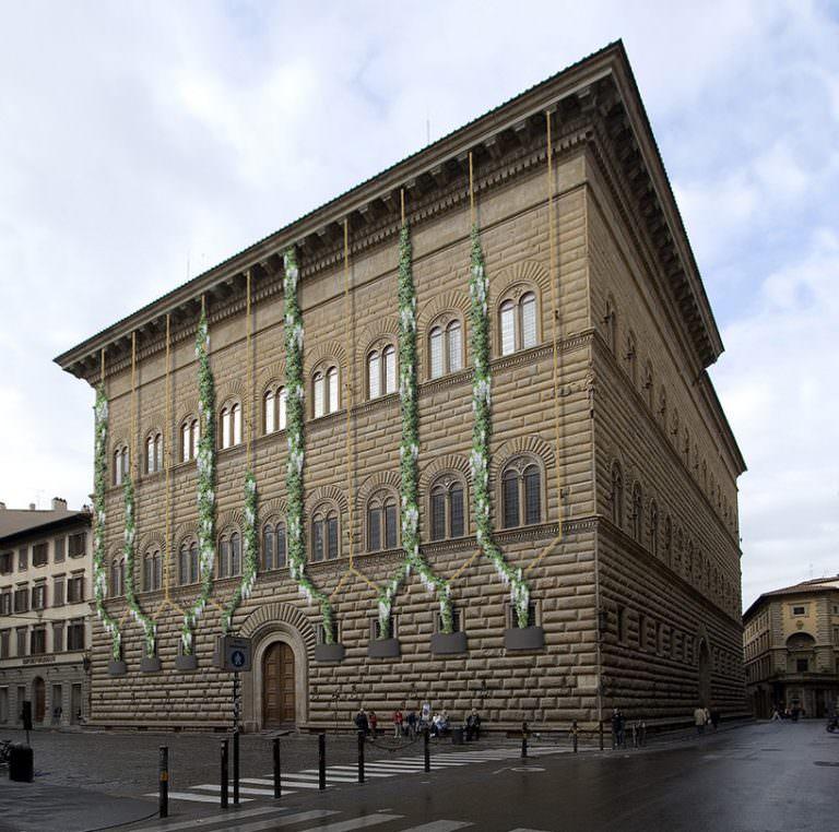 L'emozione delle piante: Carsten Höller a Palazzo Strozzi