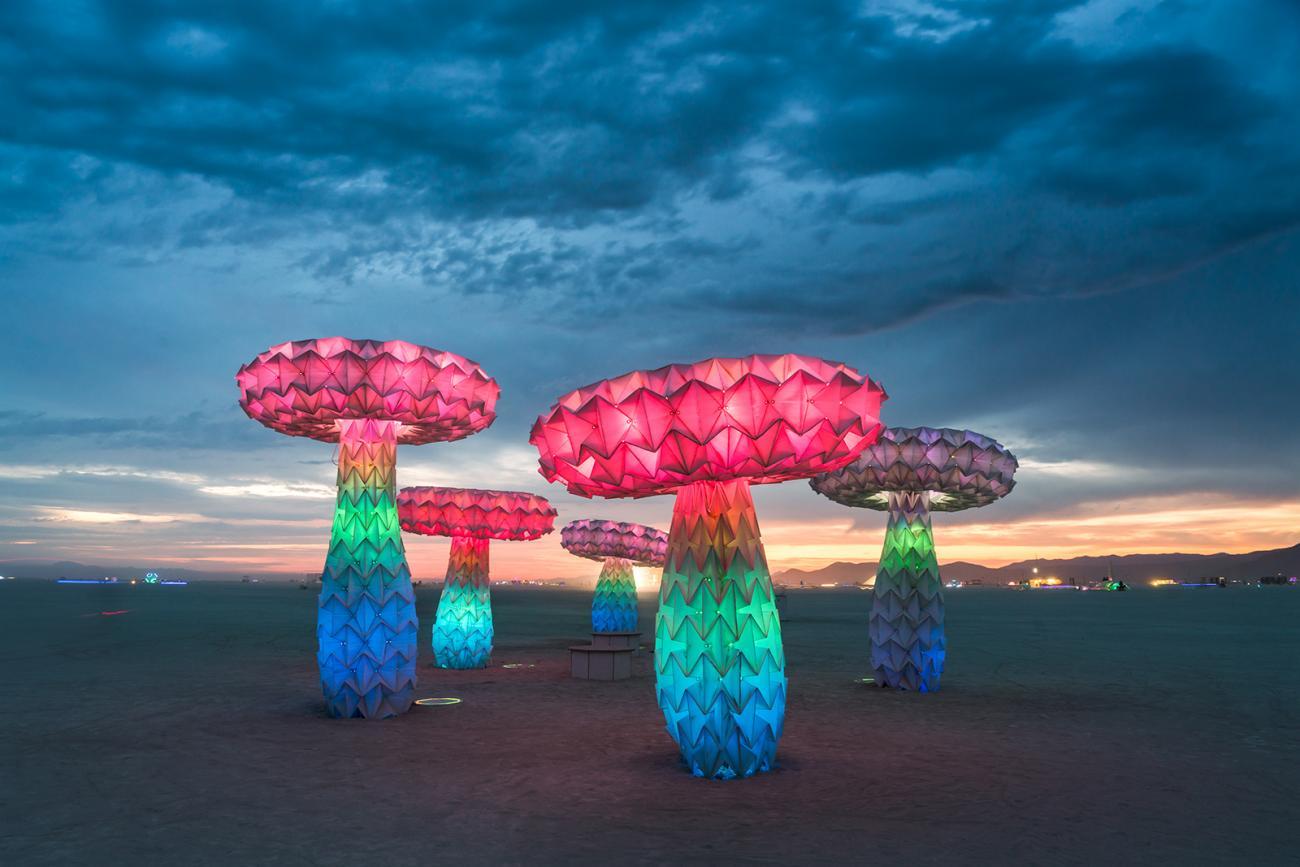 Dal deserto del Nevada al museo. Il Burning Man rivive negli spazi dello Smithsonian