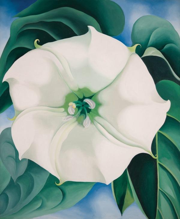 Georgia O'Keeffe «dipingo l'esperienza che io ho del fiore»