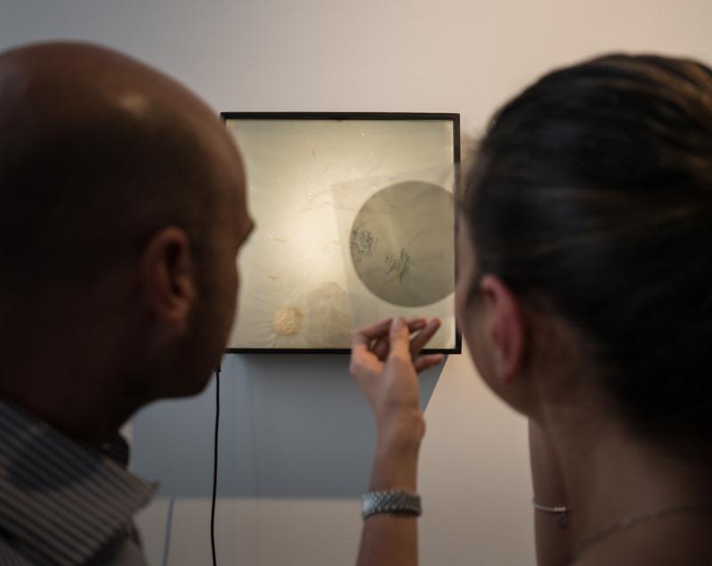 Bruno Munari, Polariscop, Creatore di forme, 10 AM Art Gallery Milano ©Pierangelo Parimbelli