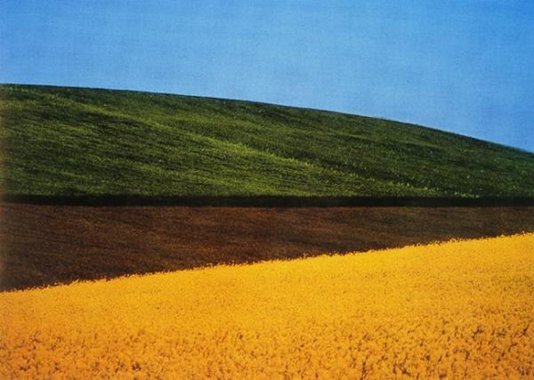 BASILICATA, ITALIA 1995 60x40 - 100x70 cm Stampa Fotografica a colori