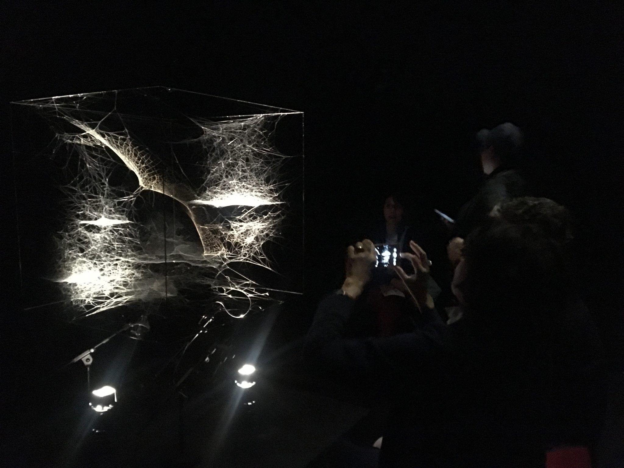 """On Air, Tomás Saraceno a Parigi. Lungo """"il sentiero dei nidi di ragno"""", nelle viscere del Palais de Tokyo"""