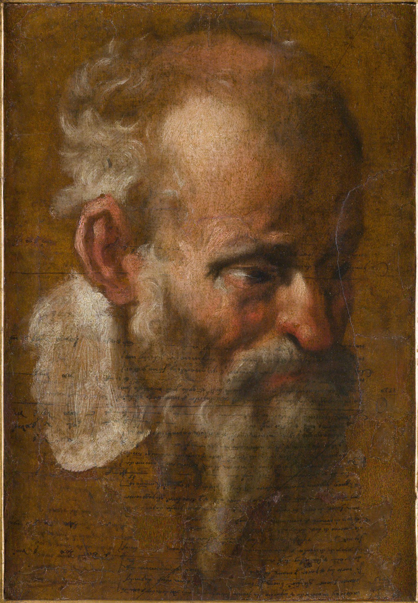 ANNIBALE CARRACCI (Bologna 1560 - 1609 Roma) Studio di testa maschile Olio su carta con inchiostro marrone, applicato su tela, 41 x 28.5 cm