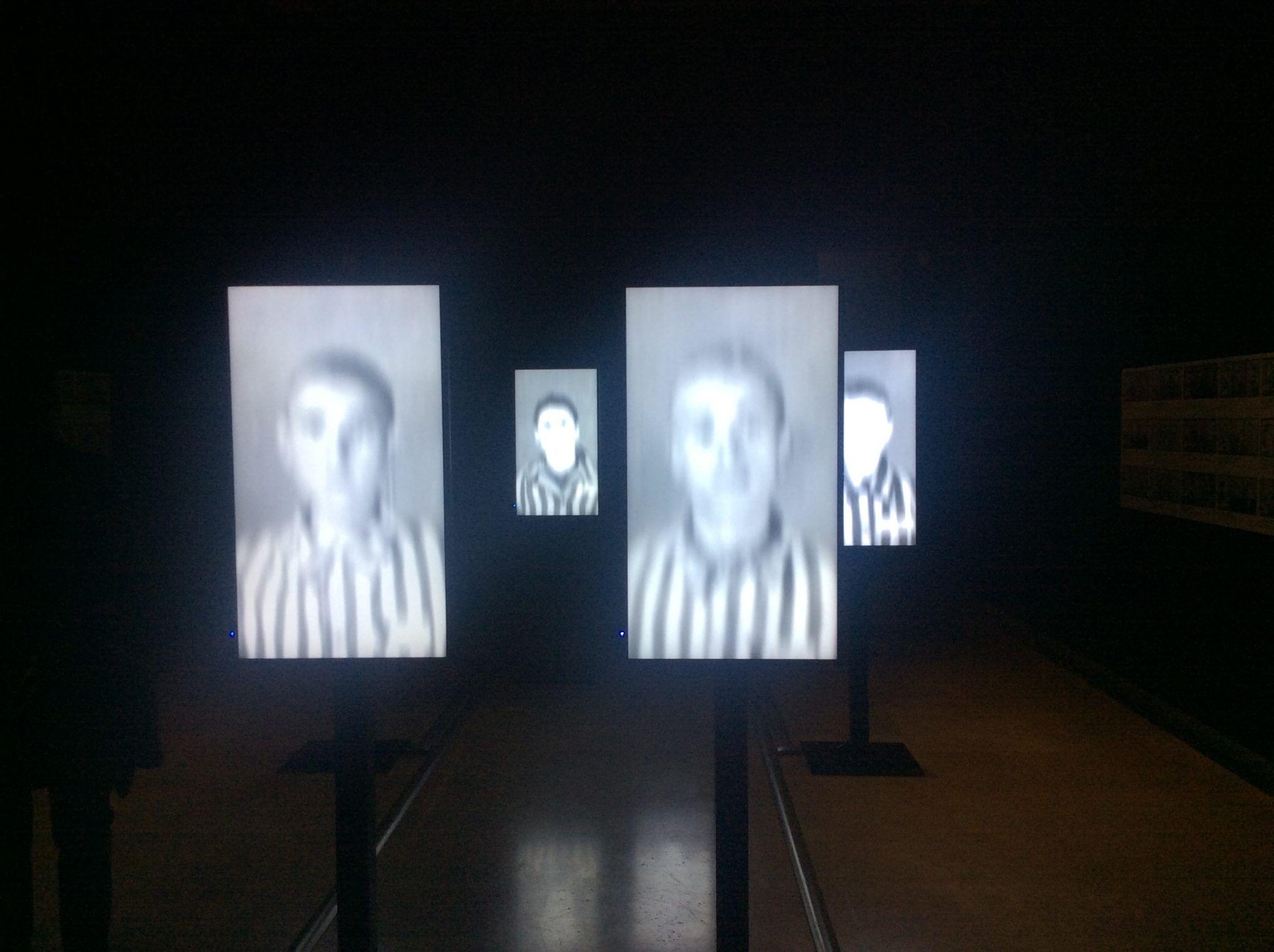 Pannelli interattivi della mostra Testimoni dei Testimoni