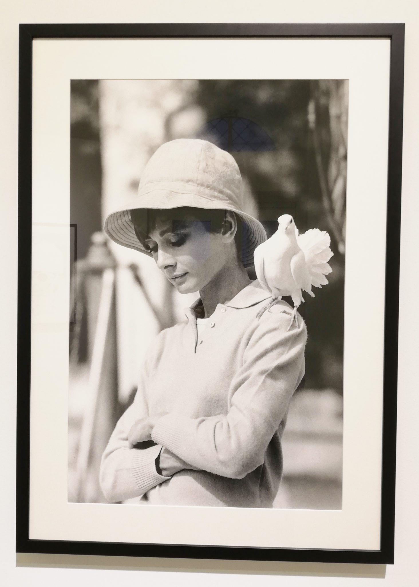 Terry O'Neill. Audrey Hepburn