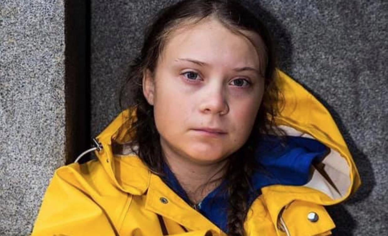 """""""Spero che uno squilibrato uccida Greta Thunberg"""". Il folle pensiero del presidente degli Amici di Palais de Tokyo"""
