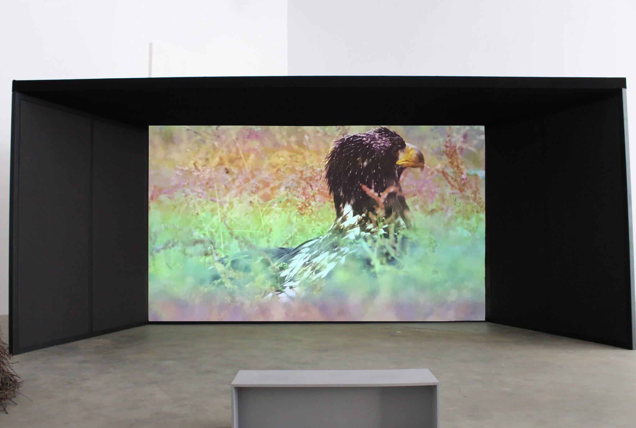 VIDEO. Mario Merz Prize alla sua 3° edizione, ecco la mostra dei cinque finalisti di quest'anno