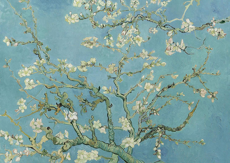 Van Gogh e il Giappone, il nuovo docufilm sulla folgorazione di Vincent van Gogh per l'Arte giapponese