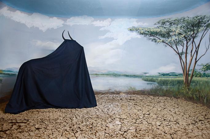 Auguri Mr. X! La collezione dell'uomo più longevo del mondo in mostra alla Galleria Alberta Pane
