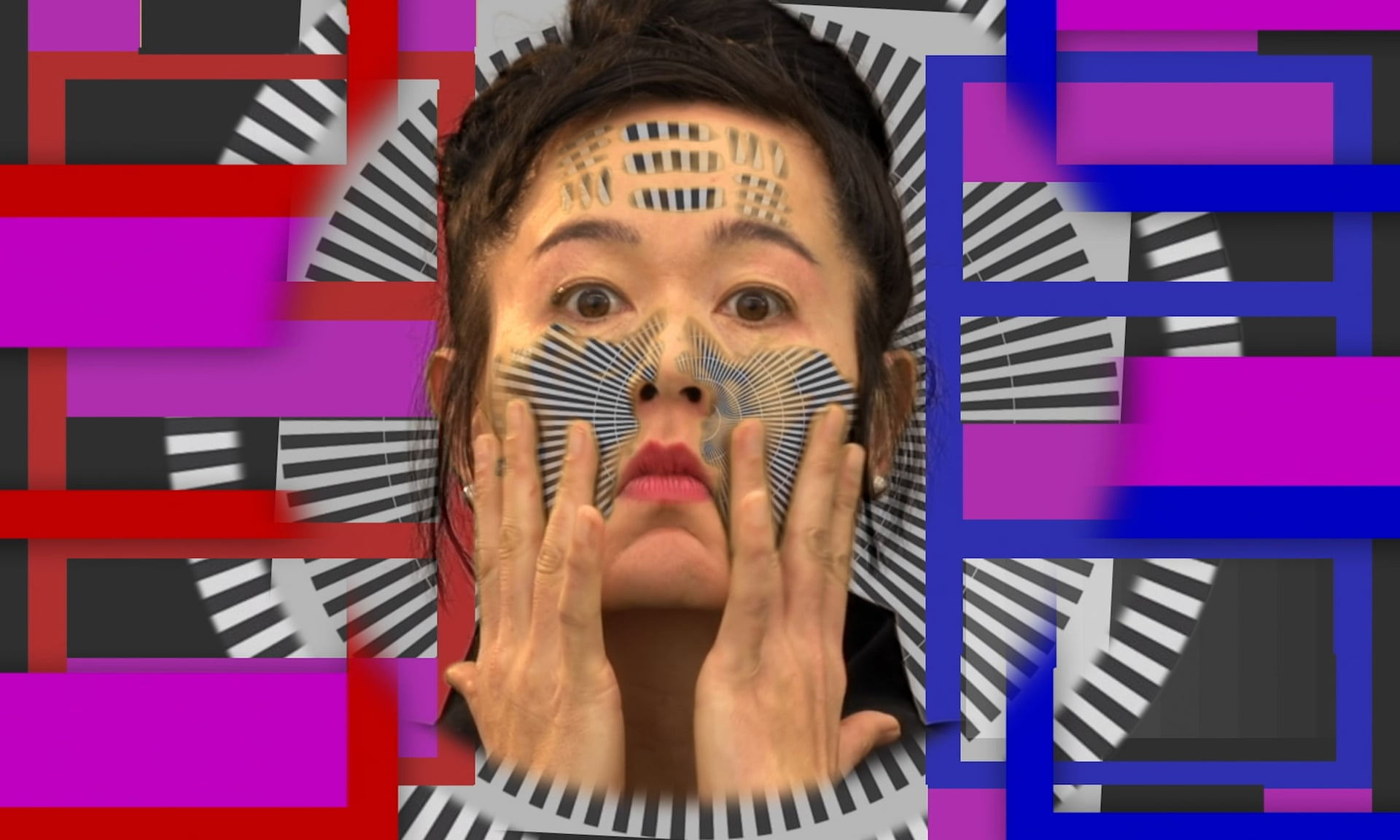 Hito Steyerl_How Not to Be Seen A Fucking Didactic Educational. MOV File, 2013. Photograph Hito Steyerl courtesy of the artist and Andrew Kreps Gallery New York