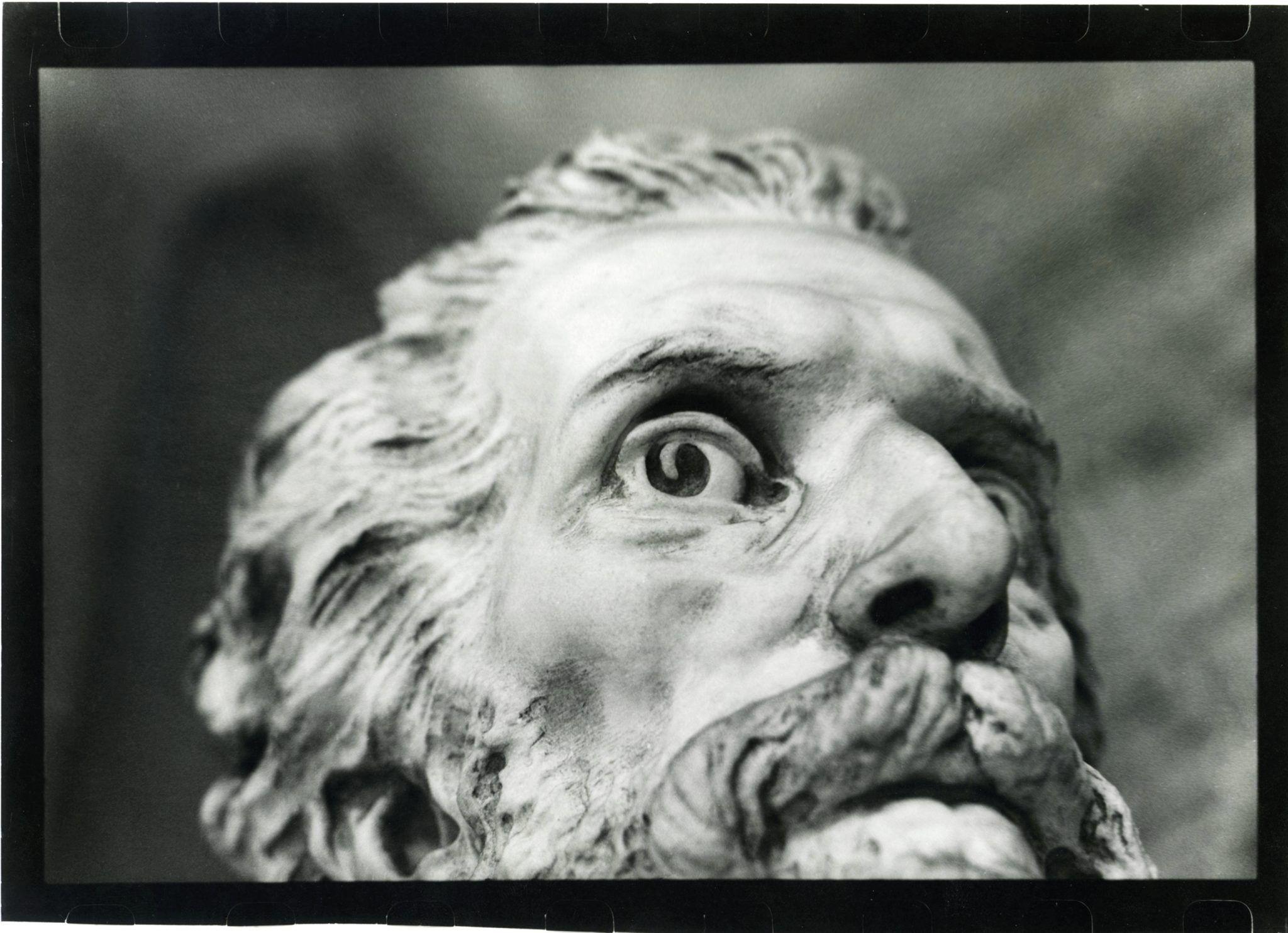 Portrait n.7 (2002), Paolo Novelli