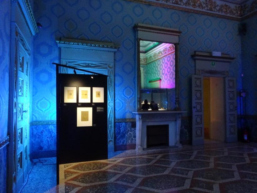 Time, Nature, Love, collezione Van Cleef & Arpels, Palazzo Reale, veduta dell'installazione, 2019