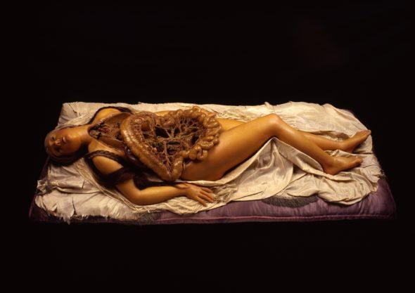 Quando l'anatomia sfiora il sublime: la scienza medica incontra l'arte, a Roma