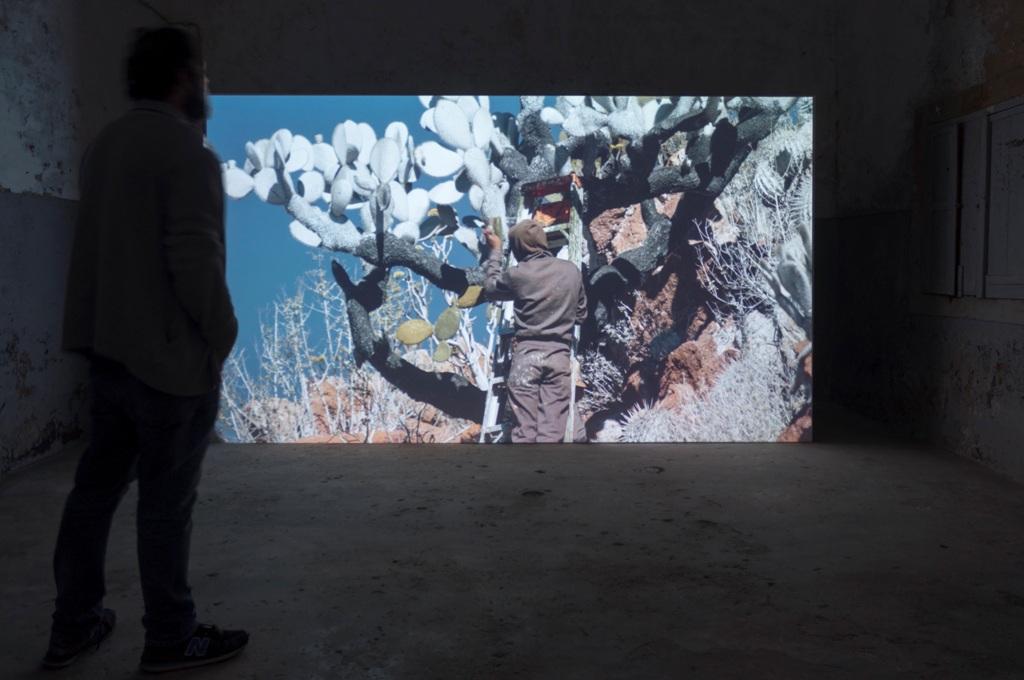 Utopia e attualità: la terza edizione della Biennale di Coimbra