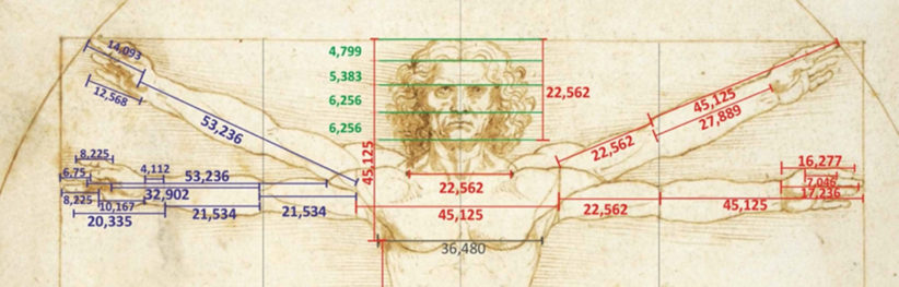 L'Uomo Vitruviano di Leonardo, le misure esatte sino al terzo decimale delle braccia con le quali si evidenzia che le due parti del corpo sono differenti tra loro