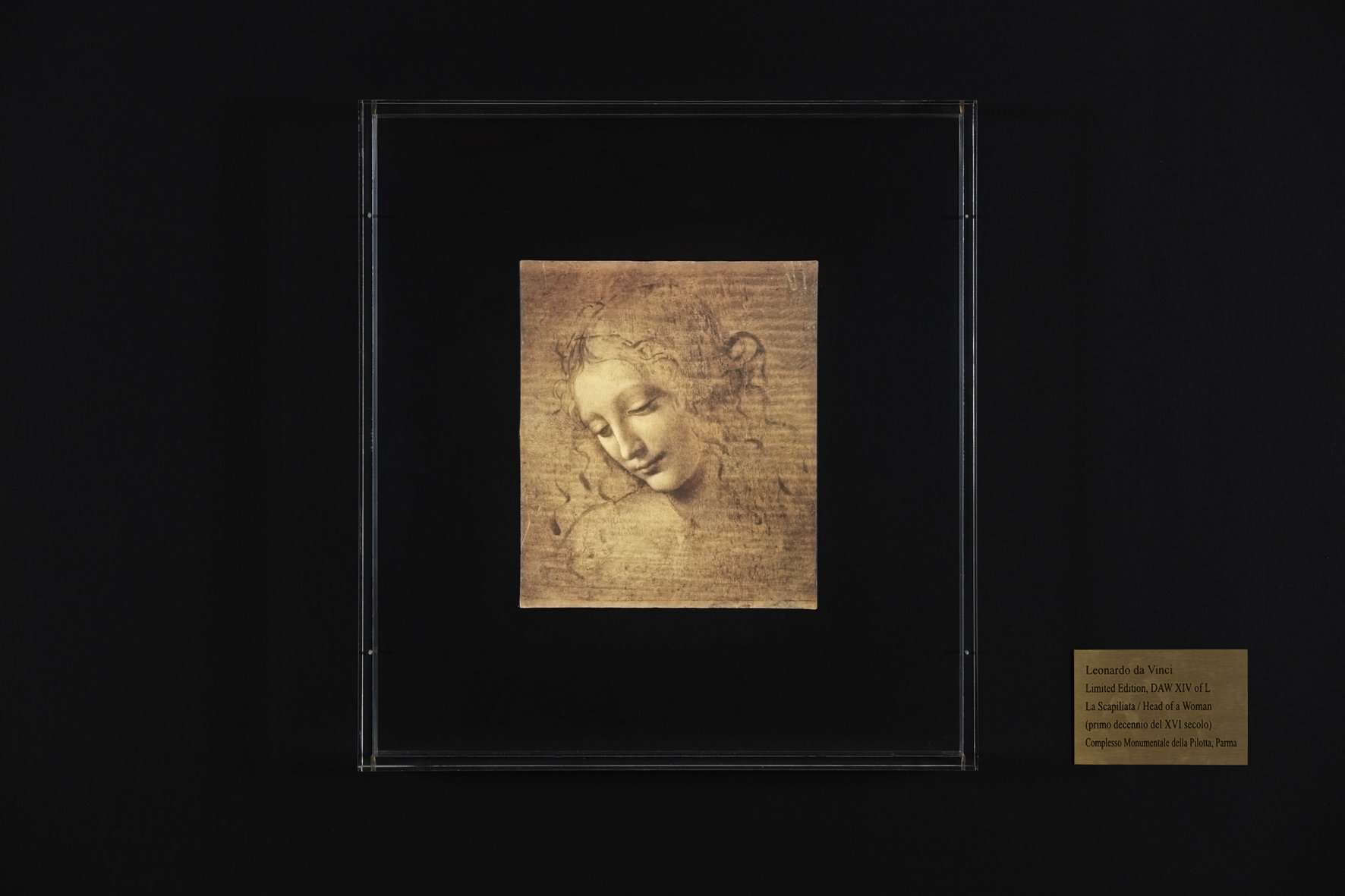 La Scapiliata di Leonardo si moltiplica: la Pilotta di Parma accoglie la rivoluzione digitale