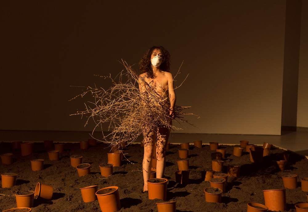 Memoria di un Giardino. L'intima ricerca di Maria Luigia Gioffrèal MARCA di Catanzaro, intervista
