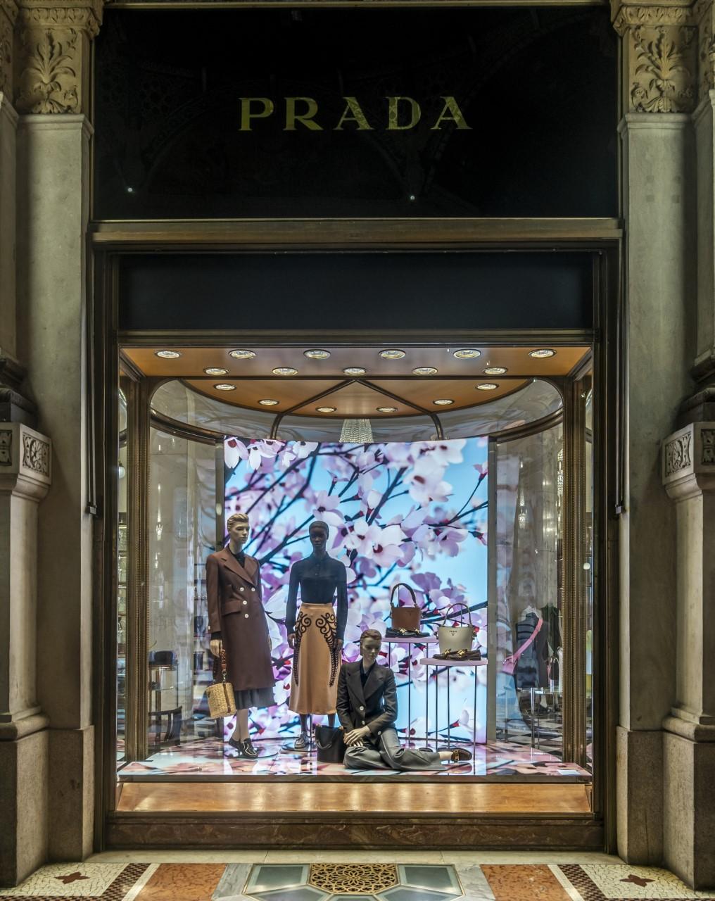 L'arte del godere della bellezza dei fiori. Blossom: Thomas Demand per le nuove vetrine d'artista di Prada
