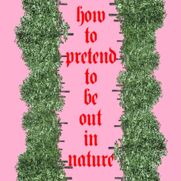 "Corinne Mazzoli, How To Pretend to Be Out in Nature, Still da video, 27"", marzo 2020 Musica: ""Esotica Esoterica"", Mauro Sommavilla Riprese di Luca Pili Da: #ARTISTSINQUARANTINE @artistsinquarantine https://www.instagram.com/p/B9ys_r9o-Tm/"