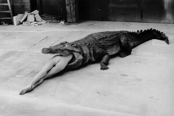 Helmut Newton, Crocodile eating ballerina