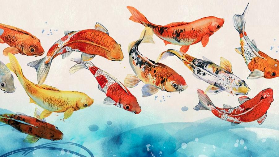 Come un sushi fuor d'acqua: Fabiola Palmeri racconta il suo Giappone
