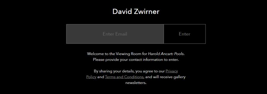 Dal sito web ufficiale della galleria David Zwirner. Modalità di accesso alla Viewing Room
