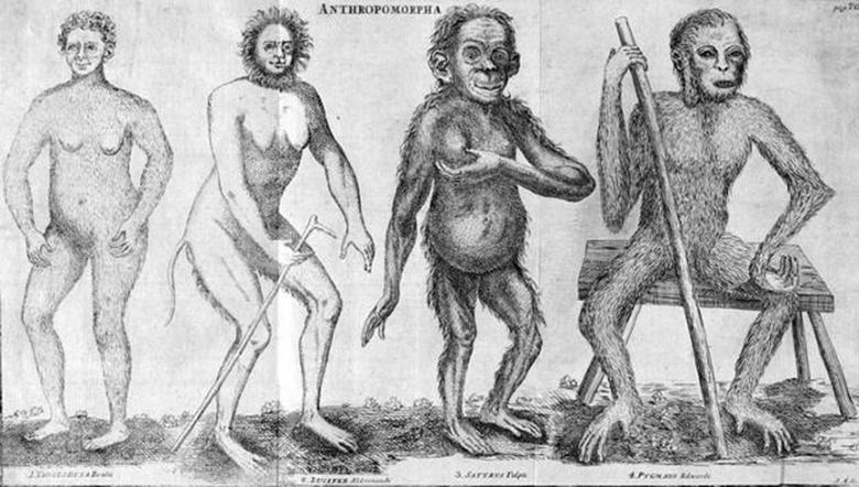 Anthropomorpha, di Christian Emmanuel Hoppius, in Amoenitates academicae (1763). Lucifero è la seconda figura da sinistra
