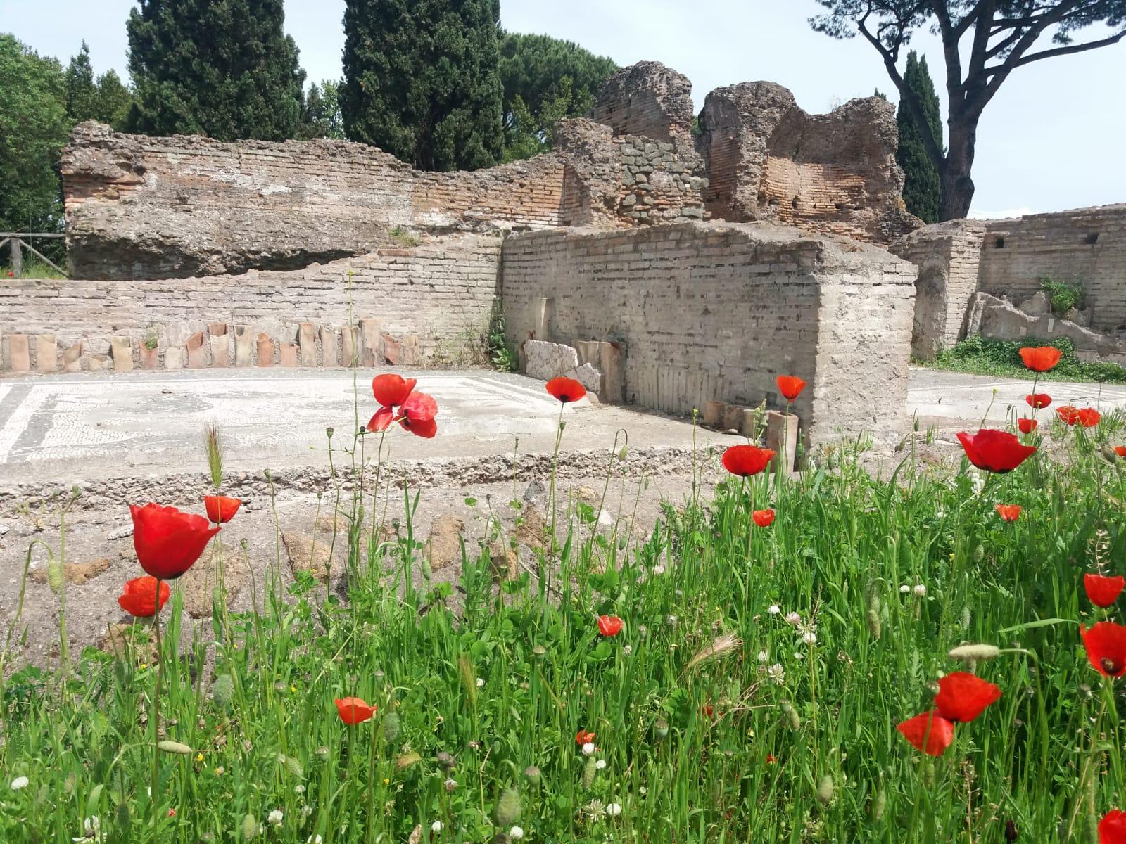 Meraviglia. Il Parco Archeologico dell'Appia Antica fiorisce e si prepara alla riapertura